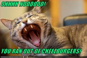 OHHHH NOOOOOO!  YOU RAN OUT OF CHEEZBURGERS!