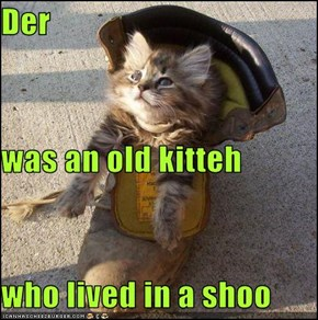 Der was an old kitteh who lived in a shoo