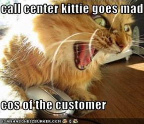 call center kittie goes mad   cos of the customer