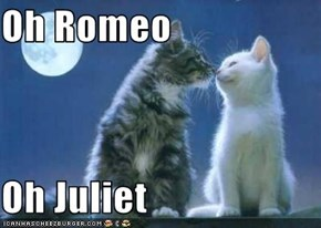 Oh Romeo  Oh Juliet