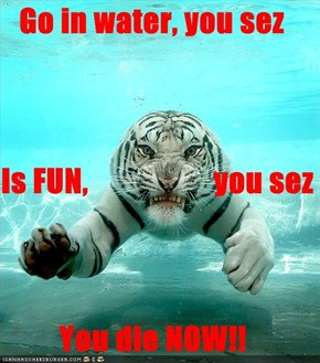 Go in water, you sez Is FUN,                    you sez You die NOW!!