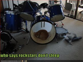 who says rockstars don't sleep