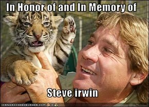 In Honor of and In Memory of  Steve irwin