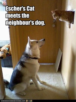 Escher's Cat meets the neighbour's dog.