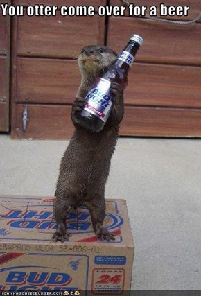 You otter come over for a beer