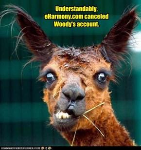 Understandably, eHarmony.com canceled Woody's account.