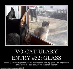 VO-CAT-ULARY  ENTRY #52: GLASS
