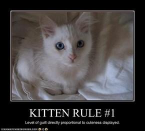 KITTEN RULE #1