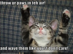 throw ur paws in teh air!  and wave them like u just don't care!