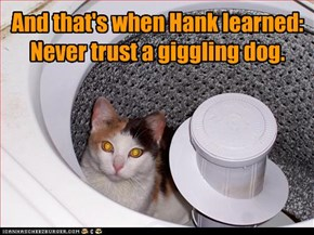 And that's when Hank learned: Never trust a giggling dog.