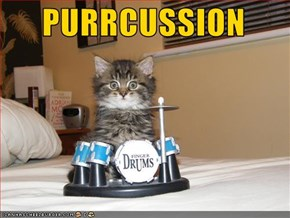 PURRCUSSION