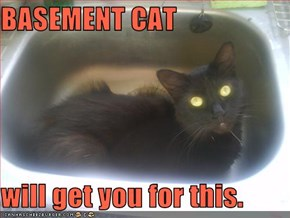 BASEMENT CAT  will get you for this.