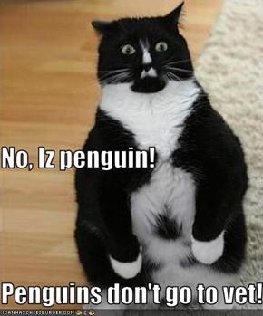 No, Iz penguin! Penguins don't go to vet!
