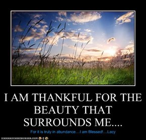 I AM THANKFUL FOR THE BEAUTY THAT SURROUNDS ME....