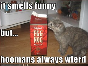 it smells funny but... hoomans always wierd