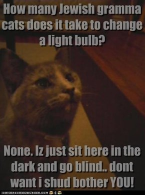 How many Jewish gramma cats does it take to change a light bulb?        None. Iz just sit here in the dark and go blind.. dont want i shud bother YOU!