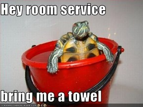 Hey room service  bring me a towel