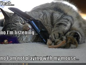 Yeah... no I'm listening... no I am not playing with my mouse...