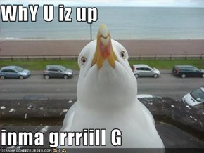 WhY U iz up   inma grrriill G