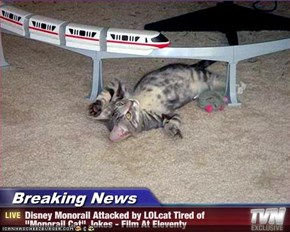 "Breaking News - Disney Monorail Attacked by LOLcat Tired of ""Monorail Cat"" Jokes - Film At Eleventy"