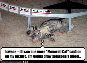 "I swear -- If I see one more ""Monorail Cat"" caption on my picture, I'm gonna draw someone's blood..."