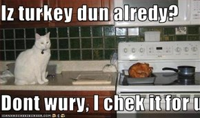 Iz turkey dun alredy?  Dont wury, I chek it for u