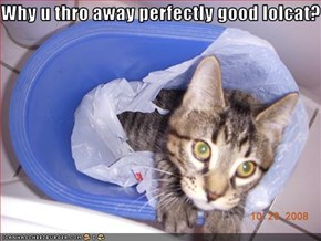 Why u thro away perfectly good lolcat?