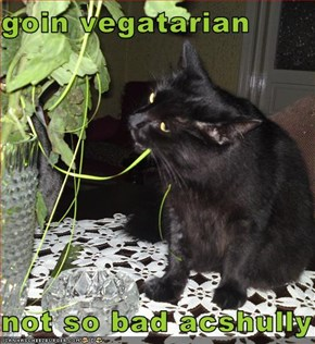 goin vegatarian  not so bad acshully