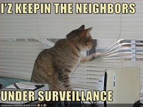 I'Z KEEPIN THE NEIGHBORS   UNDER SURVEILLANCE