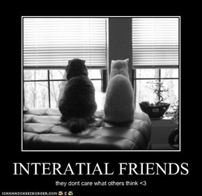 INTERATIAL FRIENDS