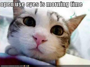 open use eyes is morning time