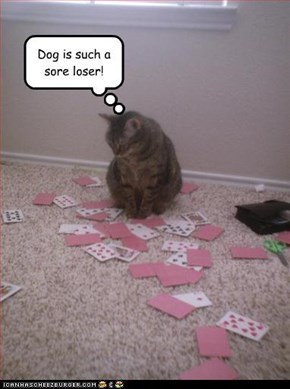 Dog is such a sore loser!