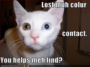 Lost muh colur contact. You helps meh find?