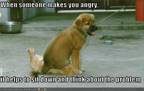 When someone makes you angry,  it helps to sit down and think about the problem