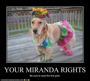 YOUR MIRANDA RIGHTS