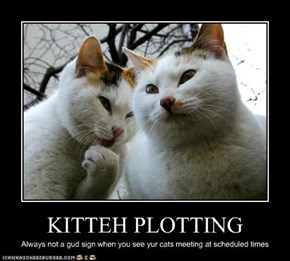 KITTEH PLOTTING