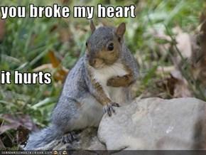 you broke my heart it hurts