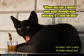 """""""When you see a mouse pole vault through your whiskey, it's time for bed."""""""