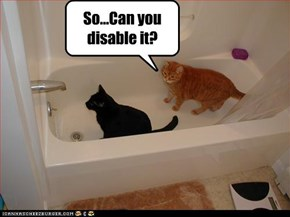 So...Can you disable it?