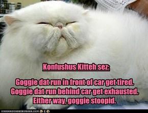 Konfushus Kitteh sez: