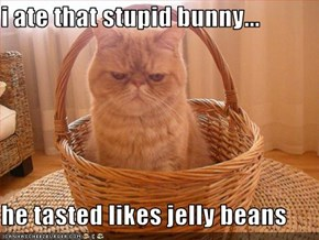 i ate that stupid bunny...  he tasted likes jelly beans