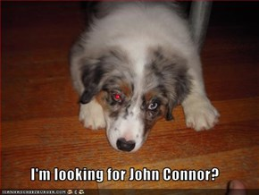I'm looking for John Connor?