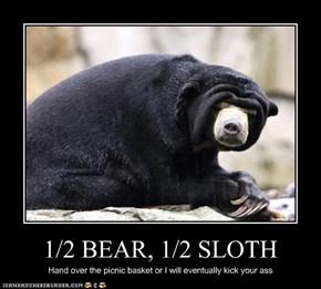 1/2 BEAR, 1/2 SLOTH