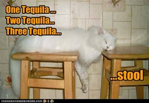 One Tequila ...  Two Tequila... Three Tequila...