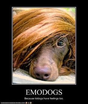 EMODOGS