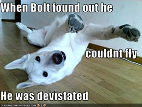 When Bolt found out he couldnt fly He was devistated