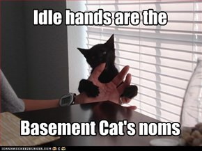 Idle hands are the     Basement Cat's noms