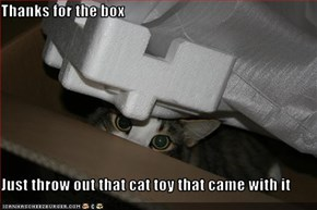 Thanks for the box  Just throw out that cat toy that came with it