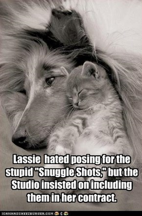 "Lassie  hated posing for the stupid ""Snuggle Shots,"" but the Studio insisted on including them in her contract."