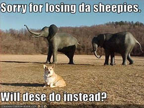 Sorry for losing da sheepies.  Will dese do instead?